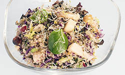 Cuina vegetariana - Mercè Homar